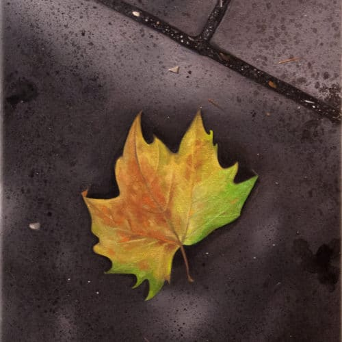 Gennaro Santaniello_ London autumn comes early
